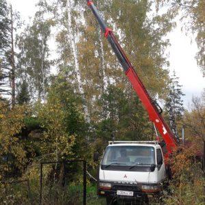 обрезка аварийных деревьев с автовышки 5