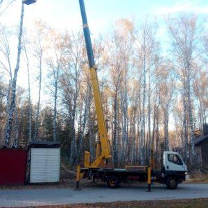 обрезка аварийных деревьев с автовышки 6